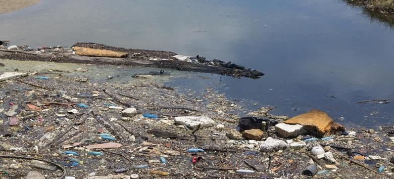 seminario-despoluicao-rios