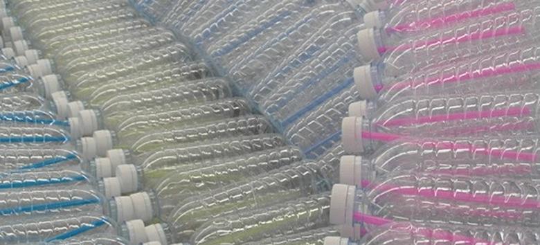 garras-plasticas