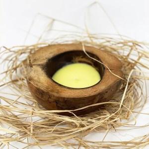 Sviečka v kokosovom orechu – citrónová tráva
