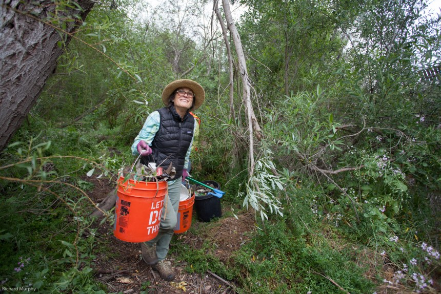 Escondido Creek Clean-up Campaign