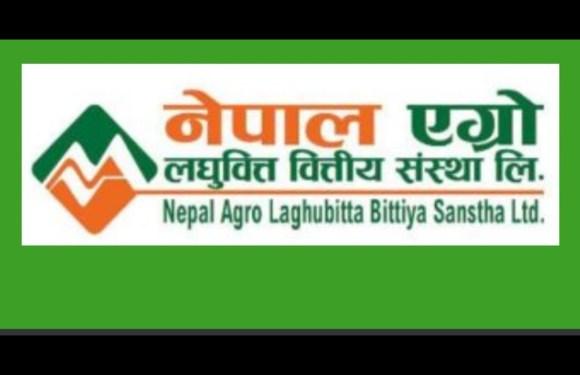 नेपाल एग्रो लघुवित्त वित्तीय संस्थाको आईपिओ अहिले ९ बजे बाँडफाँड हुँदै, ३ लाखको हात खालि