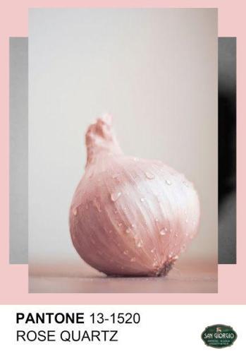 quarzo rosa serenity scala cromatica natura
