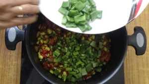 Thiruvathirai kuzhambu -broad beans