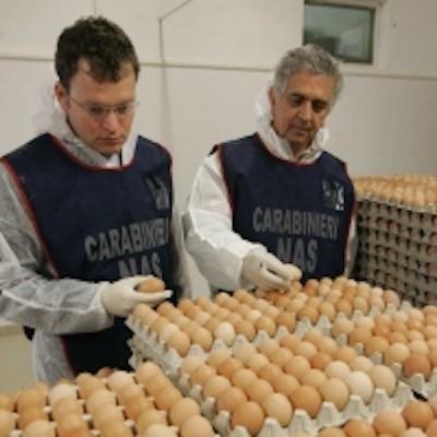 I NAS scoprono uova marce destinate all'alimentazione