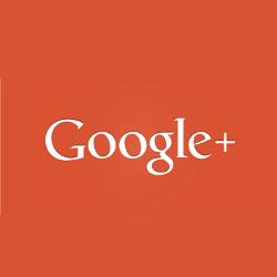 San Jose Hauling Service Review - Google