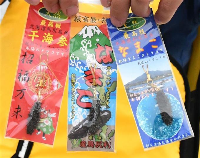 北海道・利尻漁協鬼脇青年部が製作したナマコのストラップ=北海道利尻富士町