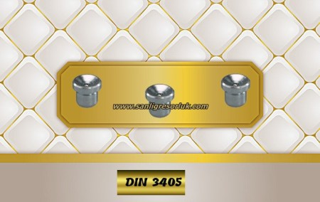 Flush Type greasenipple type N (D1a) Stainless DIN 3405