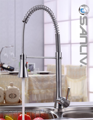 kitchen sink faucet honest dog food review chrome pull down spray pullout