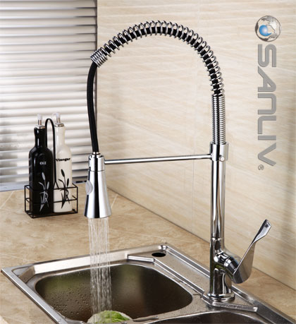 pull out spray kitchen faucet anthony bourdain confidential down 28112 pullout sink