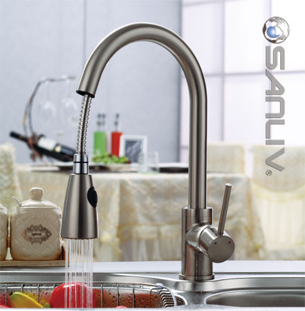 kitchen sink faucet front travel trailer pullout spray 28108