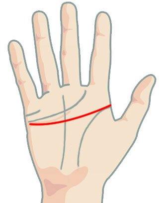 Линия на главата - близо до линията на сърцето