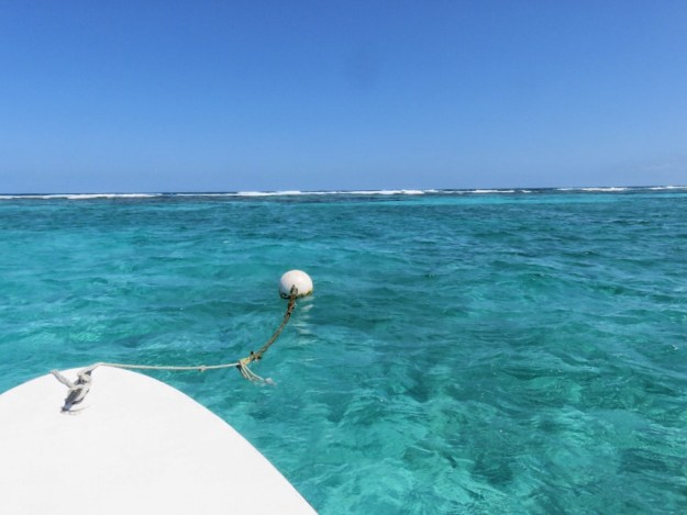 Getting to Hol Chan Marine Reserve early - so you can snorkel alone in Belize.