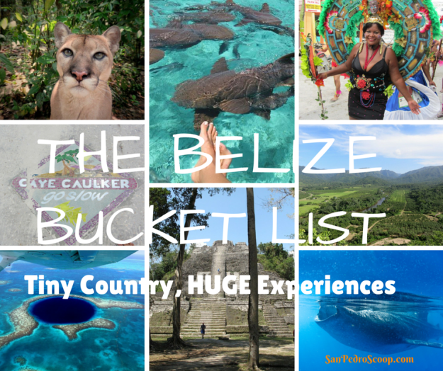 The BelizeBucket List (1)