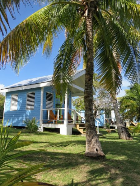 Cayo Frances Farm & Fly