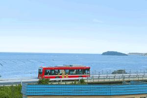 BRTバス