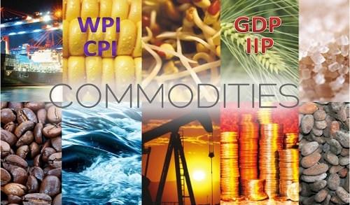 CPI, WPI, IIP और GDP Deflator: Inflation के मापक in Hindi