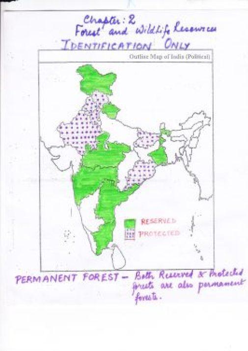 reserved_indianforest