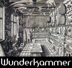 wunderkammer_logo