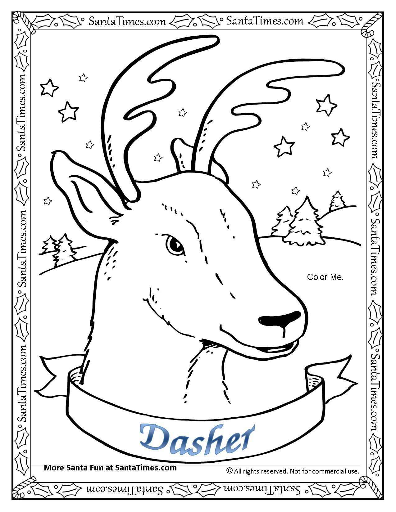 Dasher The Reindeer