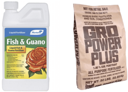 Read more about the article October 2020 – To Fall Fertilize Or Not To Fall Fertilize