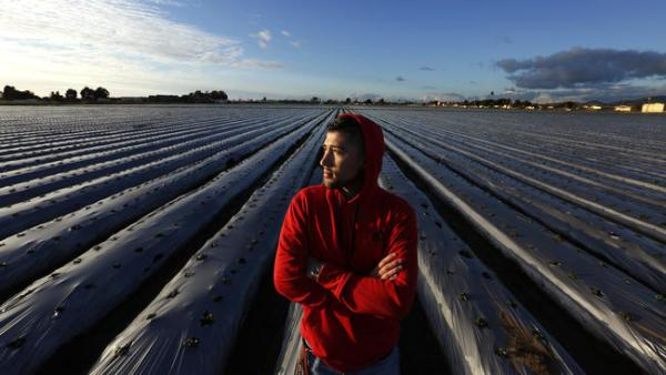 Salinas hopes to turn farm workers' children into computer scientists