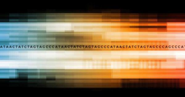 Seagate, UC Santa Cruz collaboration poised to accelerate genomics data analysis