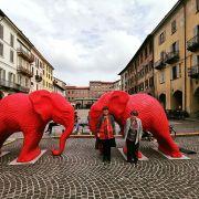 Conoscenza e utilizzo del territorio: a spasso per Pavia (gli Elefanti rossi in Piazza Vittoria)