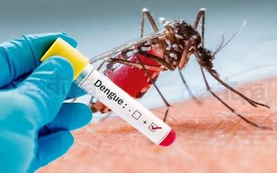 Itaúna e outras seis cidades da região recebem verbas para combate à dengue