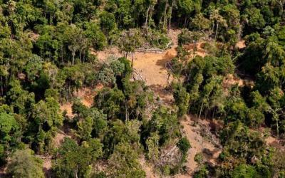 Desmatamento na Amazônia cresce 96% em setembro