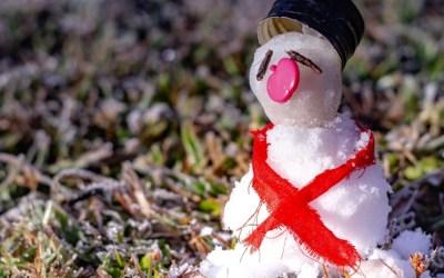 Cidades do Sul de MG têm madrugada mais fria do ano e geada