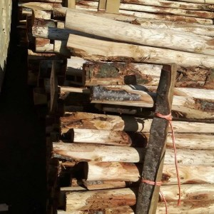 pali in castagno