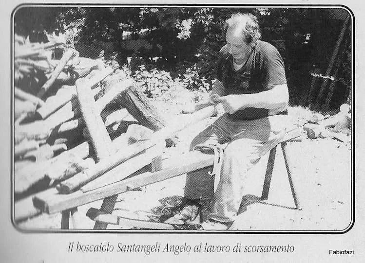 AZIENDA STORICA LEGNO ROMA