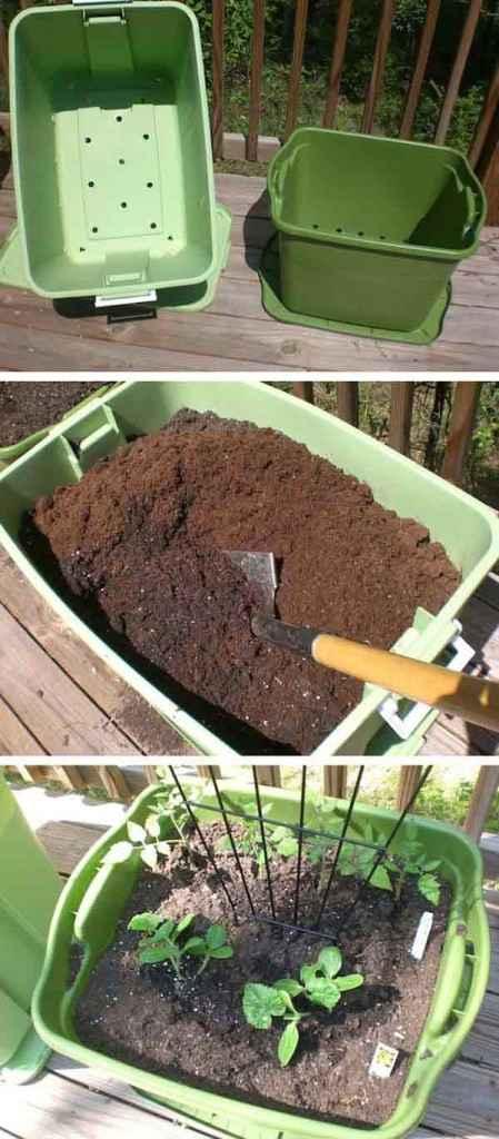 utiliser-boite-en-plastique-comme-pots-de-fleurs