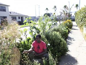 ron-finley-garden-300x225