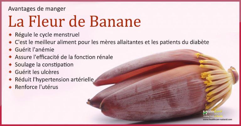 fleur-de-banane3