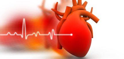 Aubepine-poudre-insuffisance-cardiaque-hypertension-arterielle