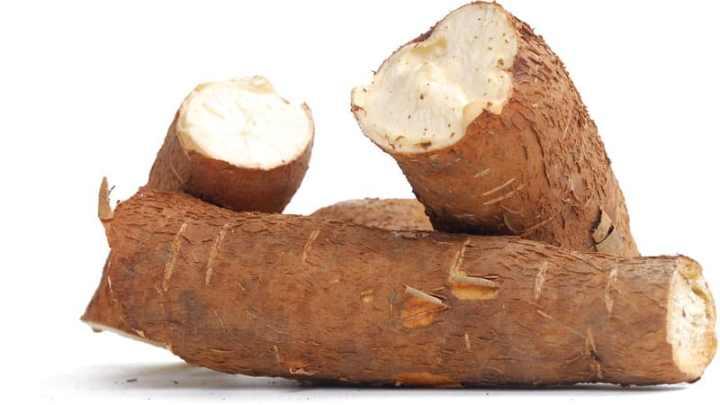 Agent thérapeutique pour traiter le cancer à l'aide de manioc