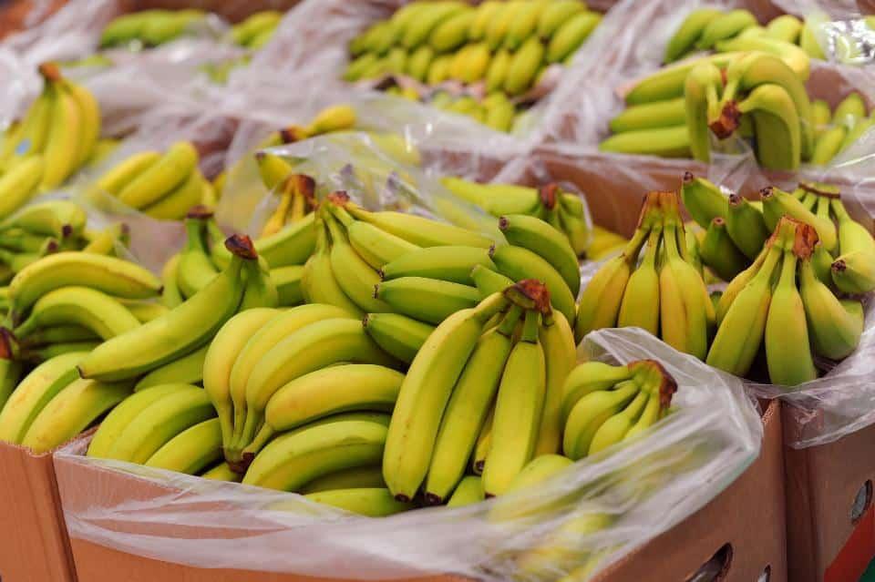 Les diabétiques peuvent-ils manger des bananes?