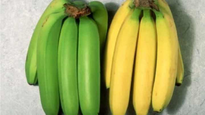 Traitement naturel de l'ulcère avec des bananes de plantain