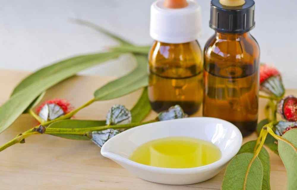 Remèdes à base de plantes pour l'arthrite a la maison