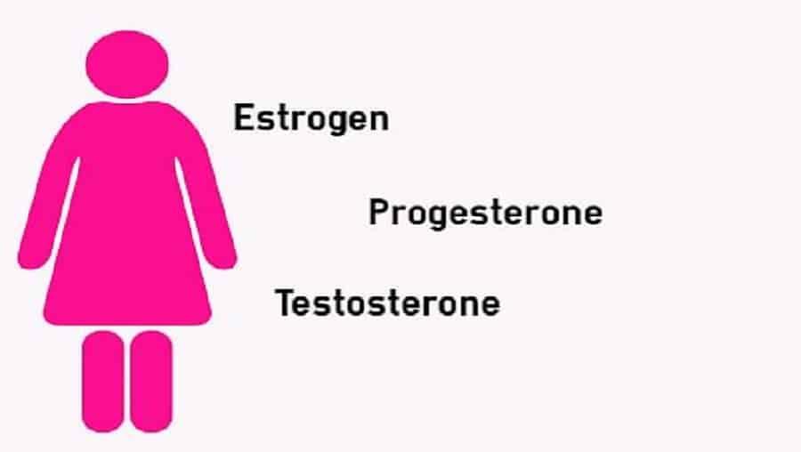 12 façons naturelles d'augmenter les œstrogènes dans votre corps