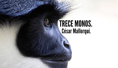 Trece-monos-libro-ce虂sar-mallorqui虂