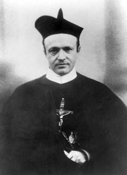 Vilijem Janauschek