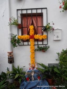 Dolores Espino Salido, San Sebastián 11