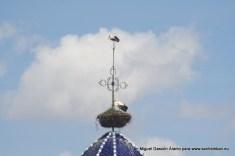 Cigüeñas en la torre de San Esteban, sábado 20 de abril de 2013
