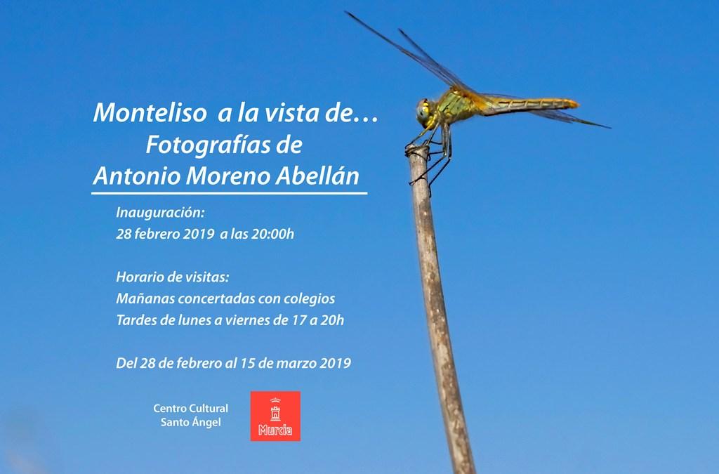 Monteliso a la vista de Antonio Moreno Abellán