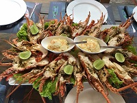 Las Terrenas XO Restaunt Lobster