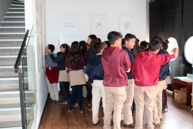 Fotos-Biblioteca-CSV-(19)
