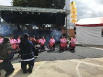 Festival Artistico Colegio San Via (23)