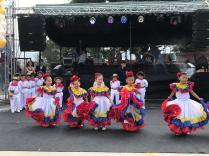 Festival Artistico Colegio San Via (41)